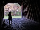 Covered Bridge Contemplation