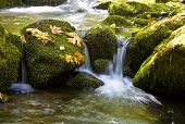 Water Rushes Over Moss Covered Rocks