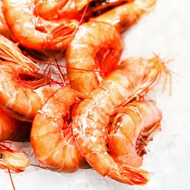 image of shrimp  - Shrimp cocktail background over white Ice on a market stall close up. Group of shelled tiger shrimps ** Note: Shallow depth of field - JPG