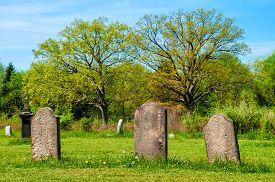 picture of headstones  - Weathered headstones in a rural nineteenth - JPG