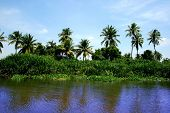 panoramic wive on thailand, floating market river