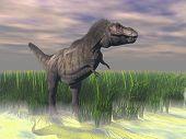 tyranosaurus reptile illustration