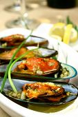 close up of green mussels with butter and garlic