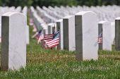 stock photo of arlington cemetery  - Gravestones decorated with U - JPG