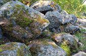 Stones in moss