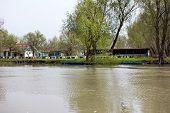 Wooden Pier On The Danube River.  Spring On Danube River poster