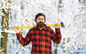 Attractive Bearded Man Outdoors In Winter. A Man In A Winter Forest. A Woodman Working In The Forest poster