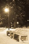 Benches And Street Lights