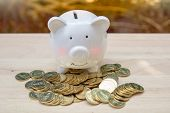 Piggy Bank And Pile Many Money Coins On A Wooden Table. - Saving Money Concept, Save Money With Stac poster
