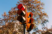 Traffic Light With Red Signal, Green Trees And Clear Blue Sky On Background, Barcelona, Spain poster