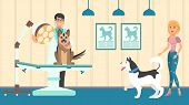 Veterinary Appointment Vector Flat Illustration. Vet Doctor Check Up Animals In Examination Room. Do poster