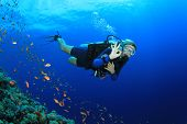 Beautiful Blonde Woman Scuba Diver signals okay underwater