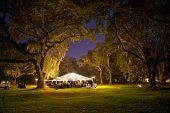 stock photo of canopy  - outdoor reception under tent and trees at night - JPG