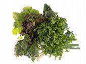 grüne Nahrung