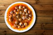dish of snails prepared at spanish traditional mediterranean style