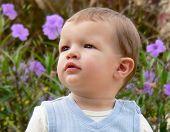 Baby Boy In Garden