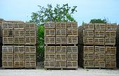 Stacked Wooden Lobster And Crab Traps