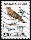 Postage Stamp France 1984 Short-toed Eagle, Bird Of Prey