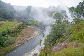 Geysers and hotsprings in Furnas in the Azores