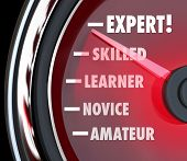 A speedometer or gauge tracking your progress in learning a skill, going from the level of amateur or novice to expert