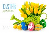 easter eggs with yellow tulips in watering can isolated on white background