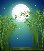 Illustration of a bamboo forest under the bright fullmoon