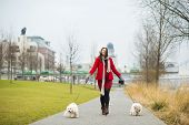 Winter portrait of pregnant woman walking dogs