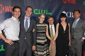 LOS ANGELES - JUL 17:  Brian Dietzen, Sean Murray, Emily Wickersham, David McCallum, Pauley Perrette