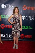 LOS ANGELES - JUL 17:  Ruth Wilson at the CBS TCA July 2014 Party at the Pacific Design Center on Ju