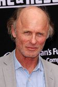LOS ANGELES - JUL 16:  Ed Harris at the