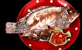 Grilled Tilapia Fish With Sauce On Dish