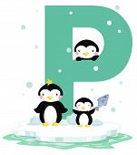 P For Penguin