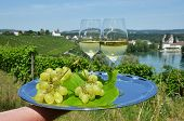 Pair of wineglasses against Rhine river and vineyards in Rheinau, Switzerland