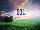 Businesswomans hand presenting the word sql against green field under orange sky