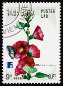 Postage Stamp Laos 1988 Hollyhock, Ornamental Plant