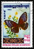 Postage Stamp Cambodia 1983 Euploea Althaea, Butterfly