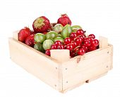 Forest berries in wooden box, isolated on white