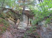 Box Canyon at Starved Rock State Park with Spring Time Tree Growth