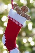 Closeup of gingerbread man in Christmas stocking