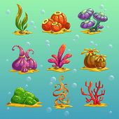 Cartoon algae