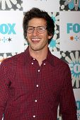 LOS ANGELES - JUL 20:  Andy Samberg at the FOX TCA July 2014 Party at the Soho House on July 20, 2014 in West Hollywood, CA