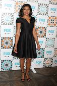 LOS ANGELES - JUL 20:  Taraji P Henson at the FOX TCA July 2014 Party at the Soho House on July 20, 2014 in West Hollywood, CA