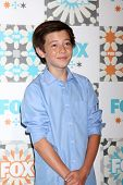 LOS ANGELES - JUL 20:  Griffin Gluck at the FOX TCA July 2014 Party at the Soho House on July 20, 20