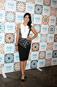 LOS ANGELES - JUL 20:  Stephanie Beatriz at the FOX TCA July 2014 Party at the Soho House on July 20, 2014 in West Hollywood, CA