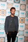 LOS ANGELES - JUL 20:  Tom Mison at the FOX TCA July 2014 Party at the Soho House on July 20, 2014 in West Hollywood, CA