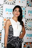 LOS ANGELES - JUL 20:  Stephanie Beatriz at the FOX TCA July 2014 Party at the Soho House on July 20