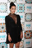 LOS ANGELES - JUL 20:  Melissa Fumero at the FOX TCA July 2014 Party at the Soho House on July 20, 2