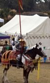 pic of jousting  - Knight in armor prepares for the joust - JPG