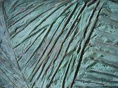 Bronze Surface