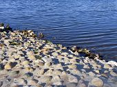 Rocky Shore Of River. Water's Edge